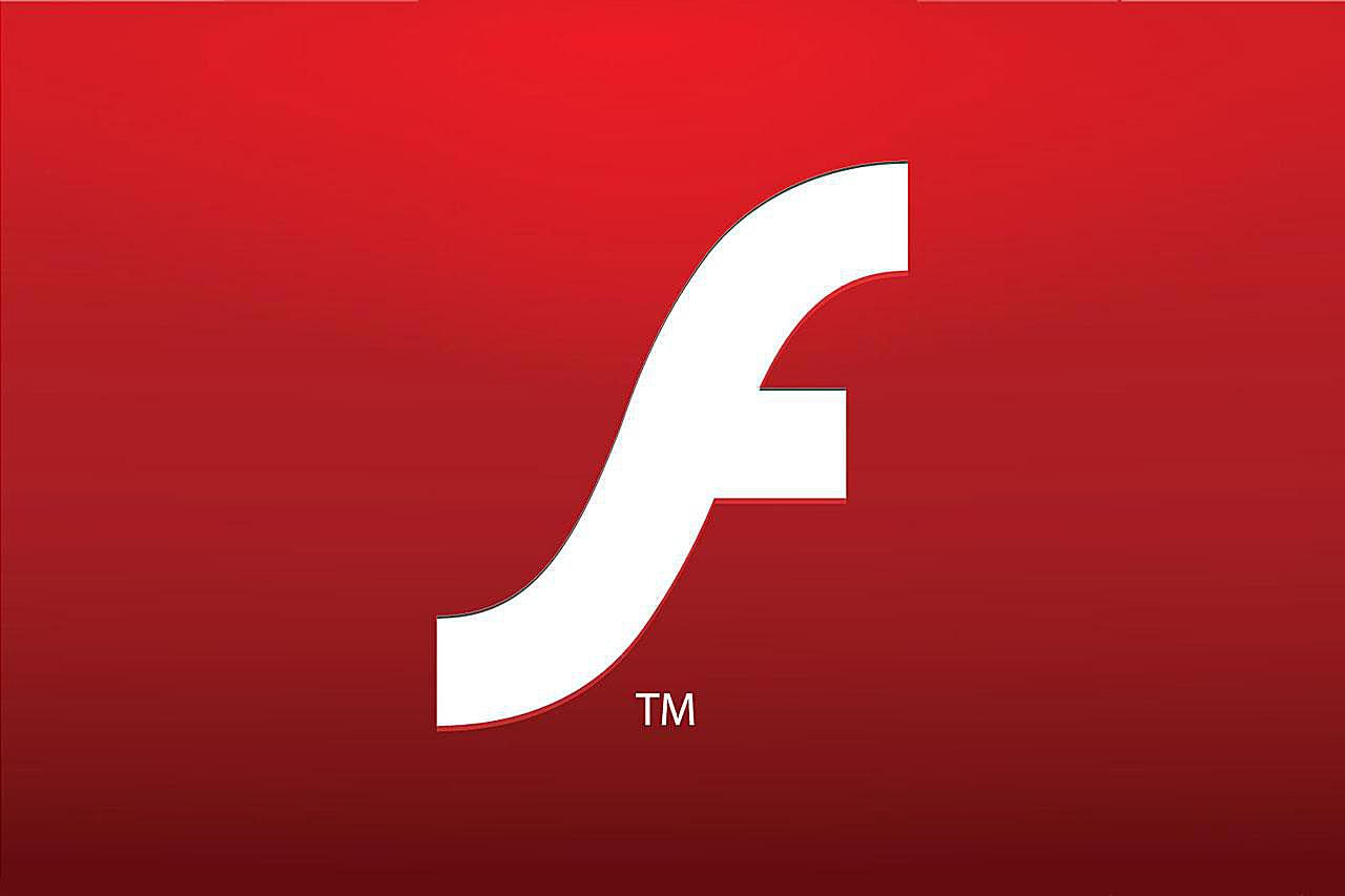 What Is Flash Version