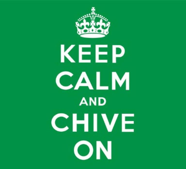 thechive austin office. KCCO Is This Year\u0027s Version Of \u0027Be Cool\u0027 Thechive Austin Office