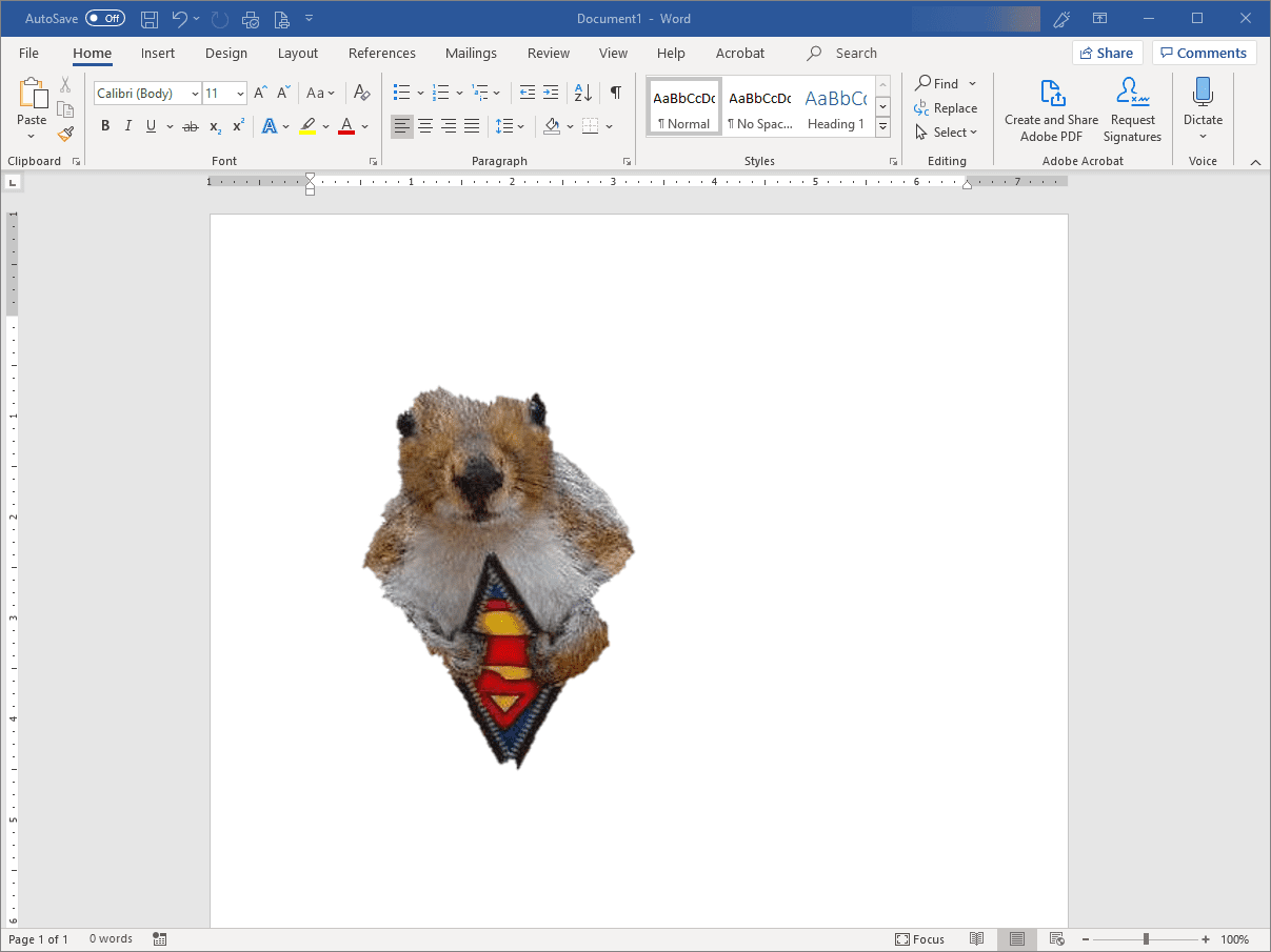 Word with edited squirrel