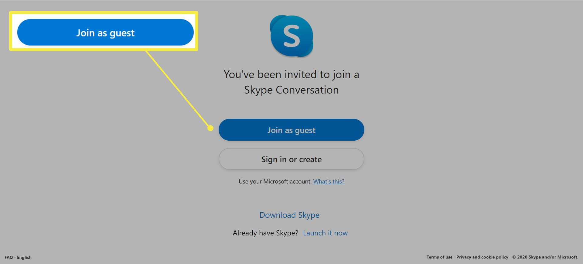 Joining a Skype Meet Now Call.