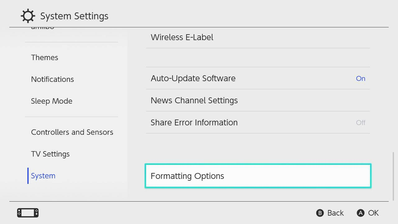 Formatting Options highlighted in the Nintendo Switch Settings menu