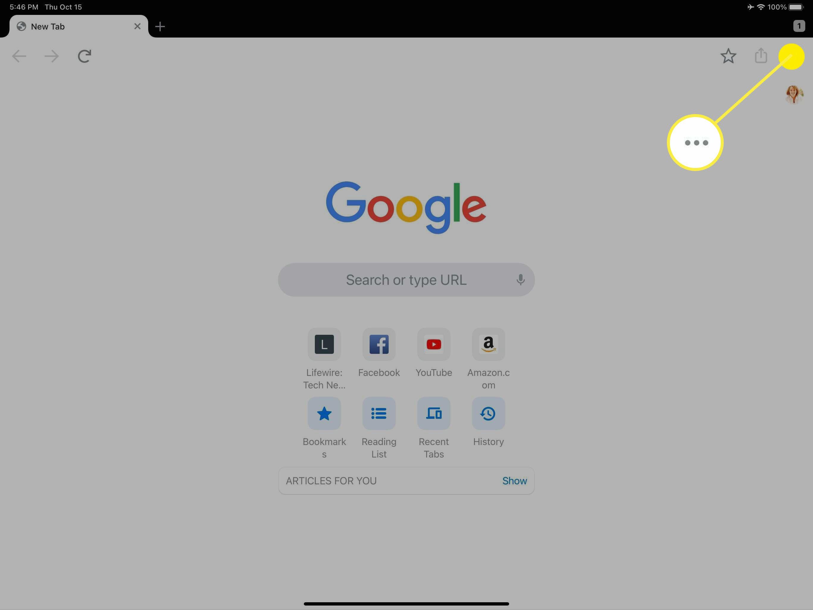 The three dot menu in Chrome.