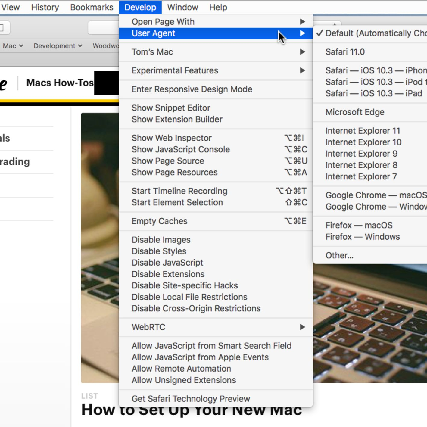 Add More Features by Enabling Safari's Develop Menu