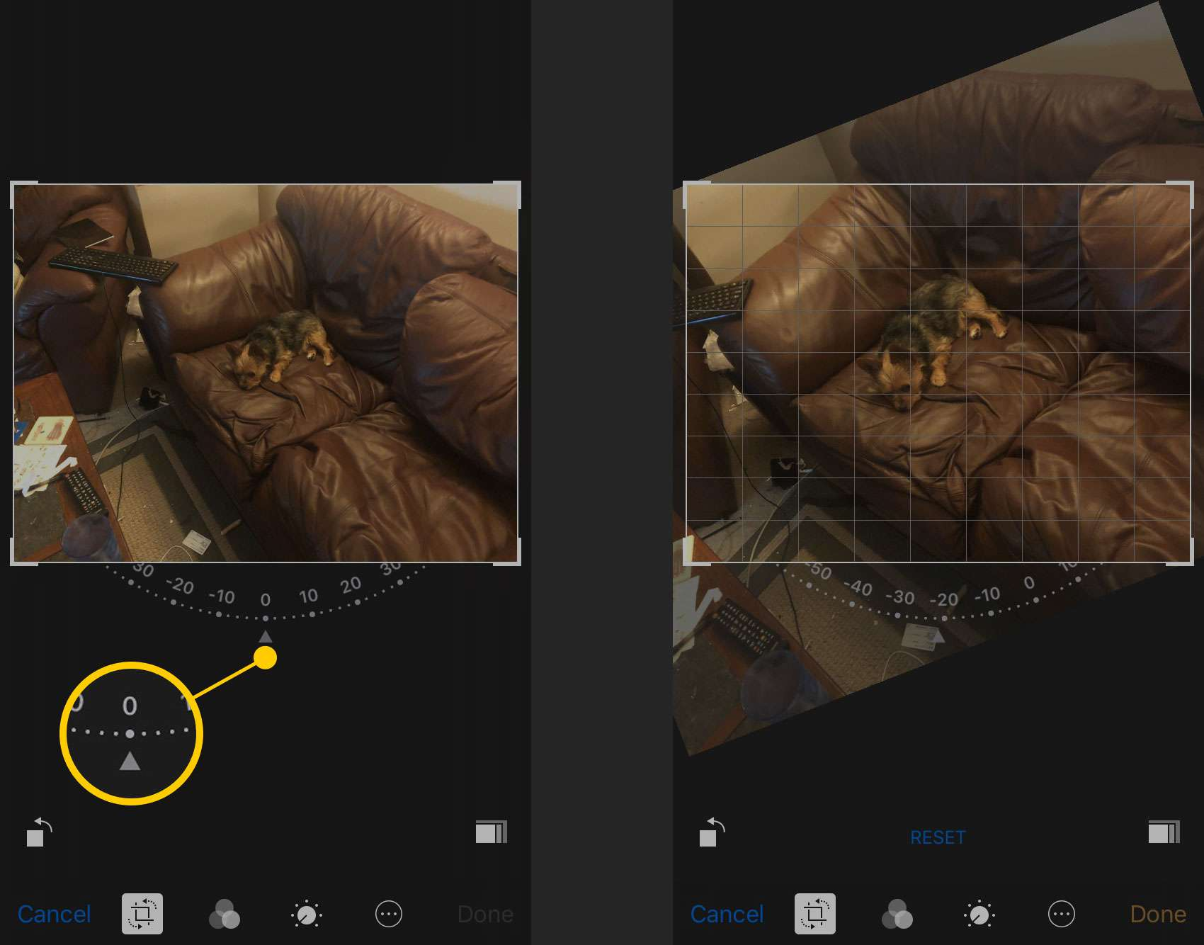 Free-rotate tool in Photos on iPhone