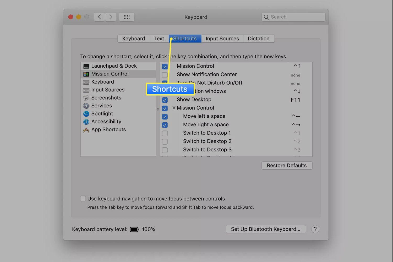 Keyboard preferences Shortcuts tab on macOS