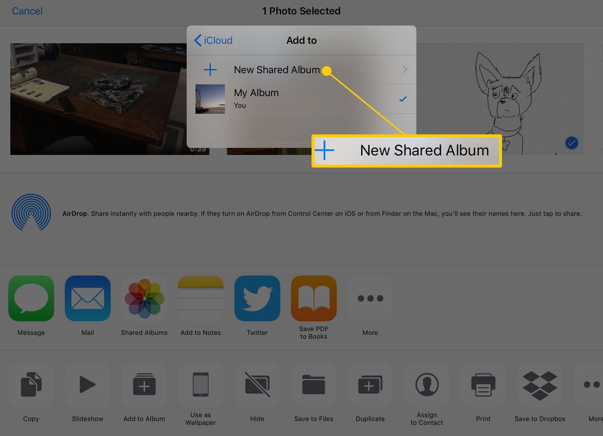 Creating a new shared album on iPad