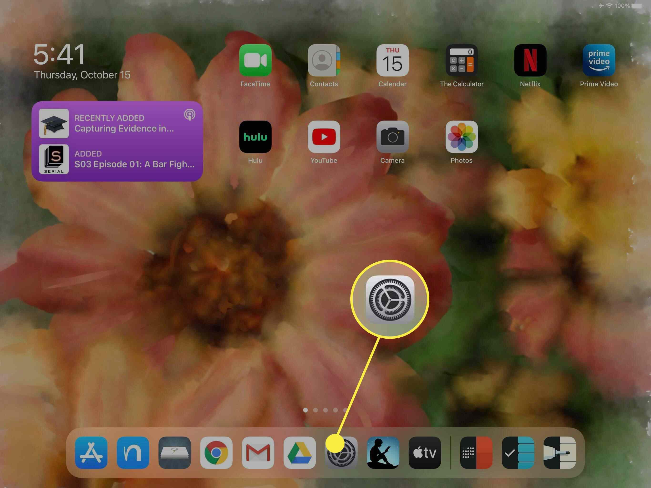The Settings icon on iPad.