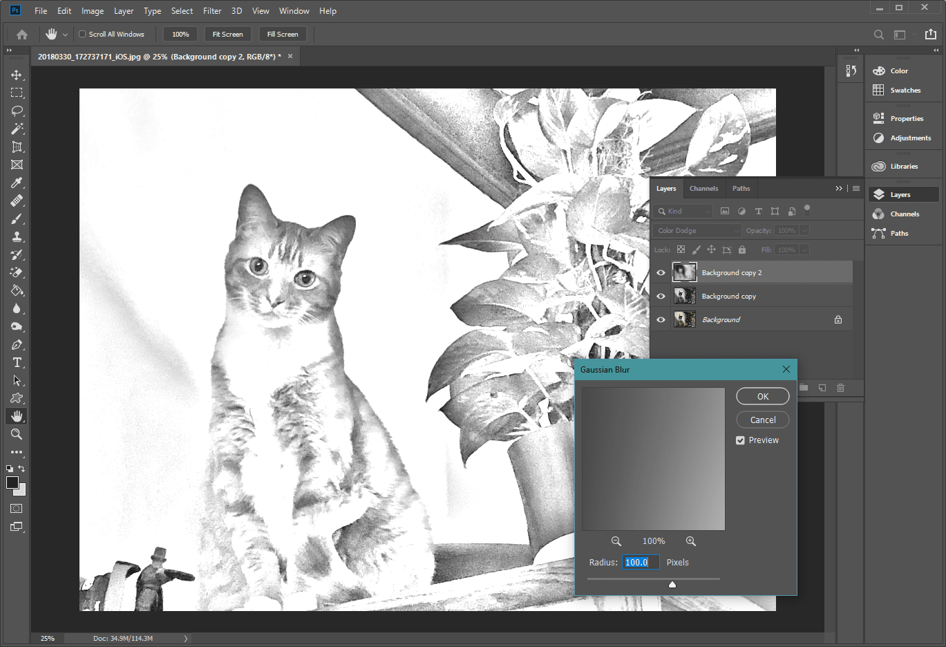 Turn a Photo into a Photoshop Pencil Sketch