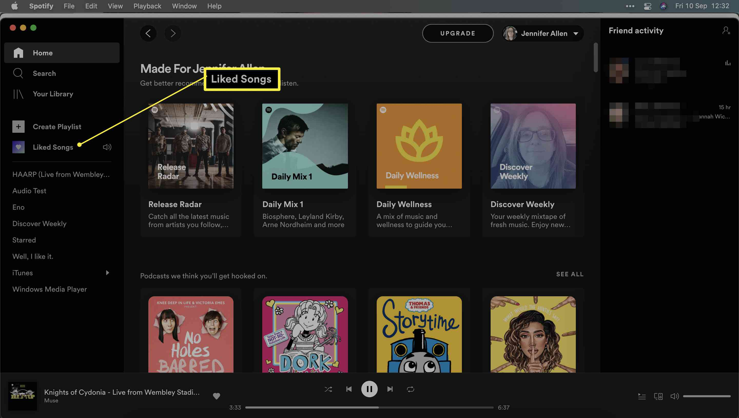 Spotify with Liked Songs highlighted