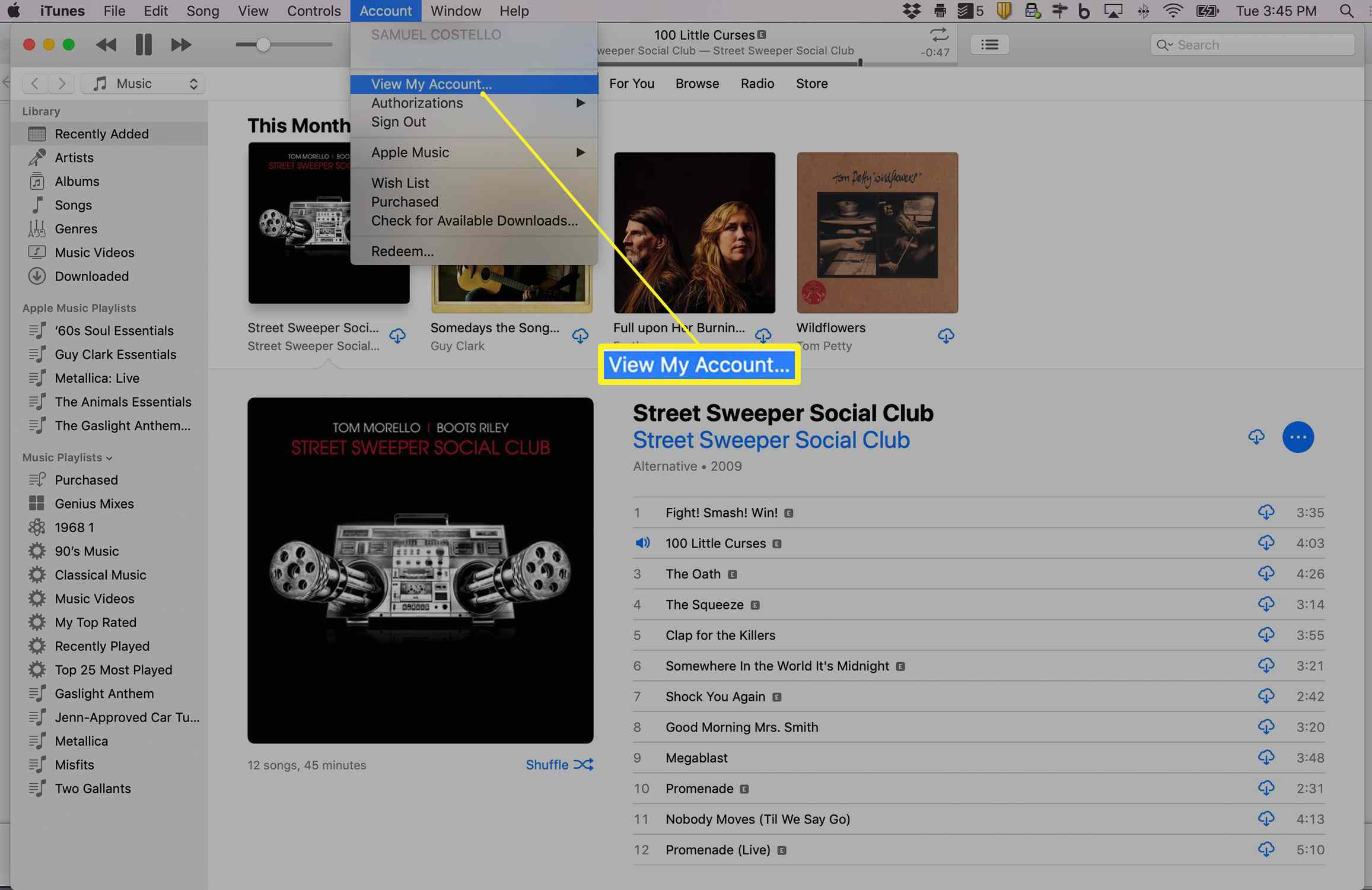 iTunes showing View My Account option