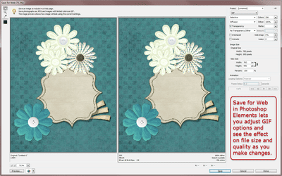 Save for Web dialogue box in Photoshop Elements