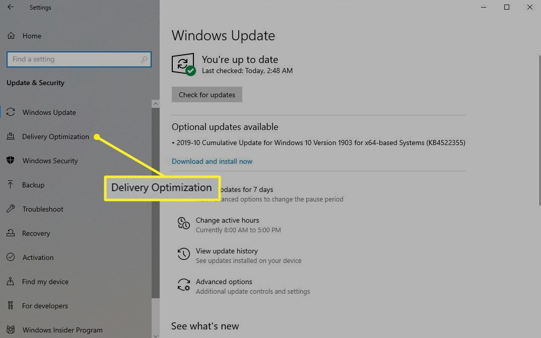 Update & Security Screen in Windows with Delivery Optimization highlighted