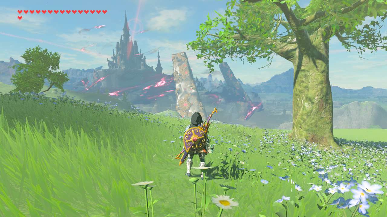 Finding Silent Princess memory in The Legend of Zelda: Breath of the Wild.