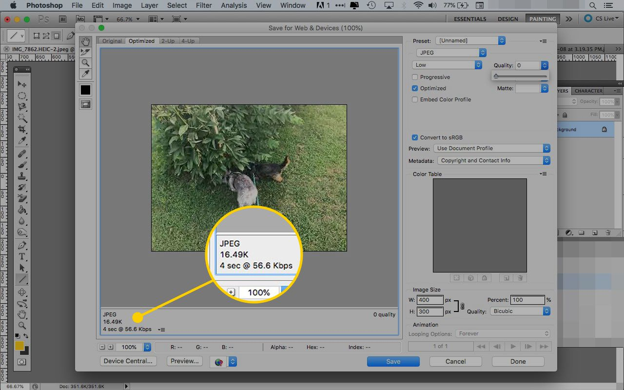 Photoshop's Save for Web & Devices window with the image size and type readout highlighted