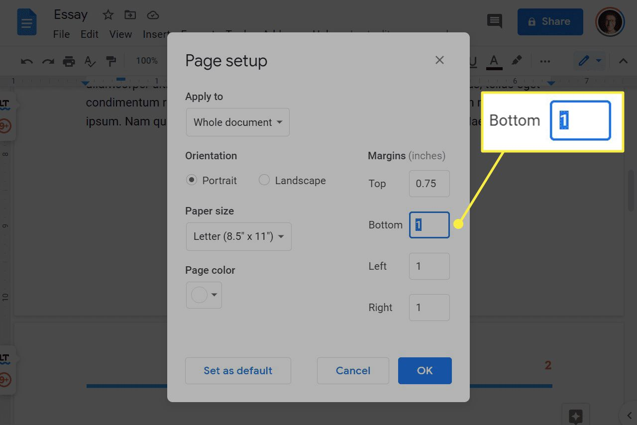 Google Docs page setup settings.