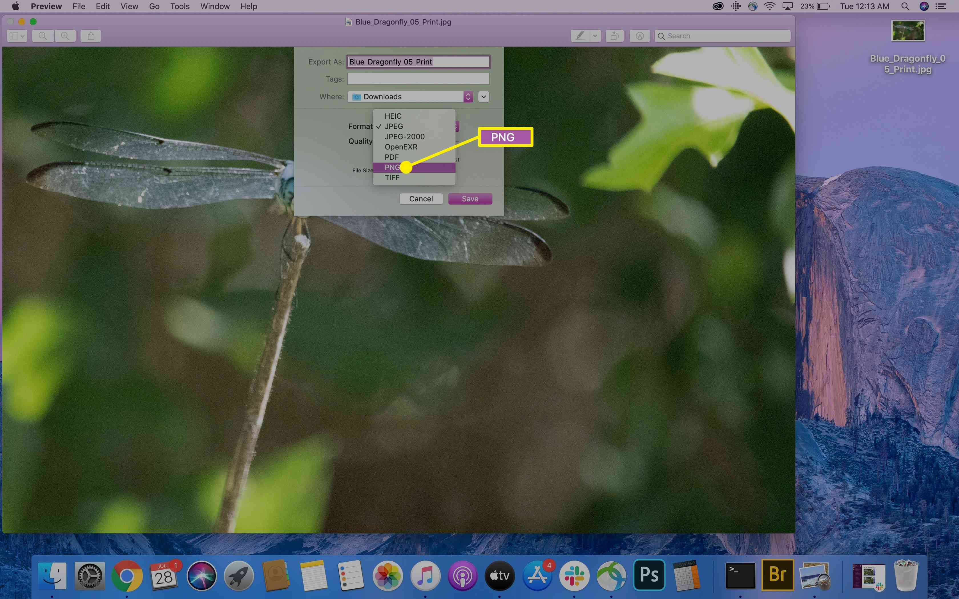 The PNG option in Preview on a Mac.