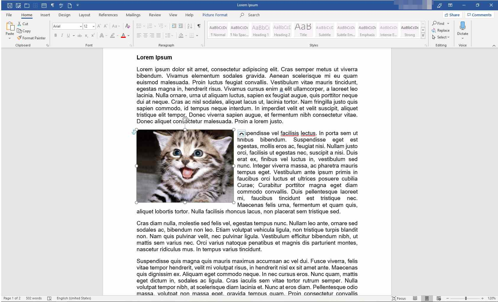 Image selected in MS Word