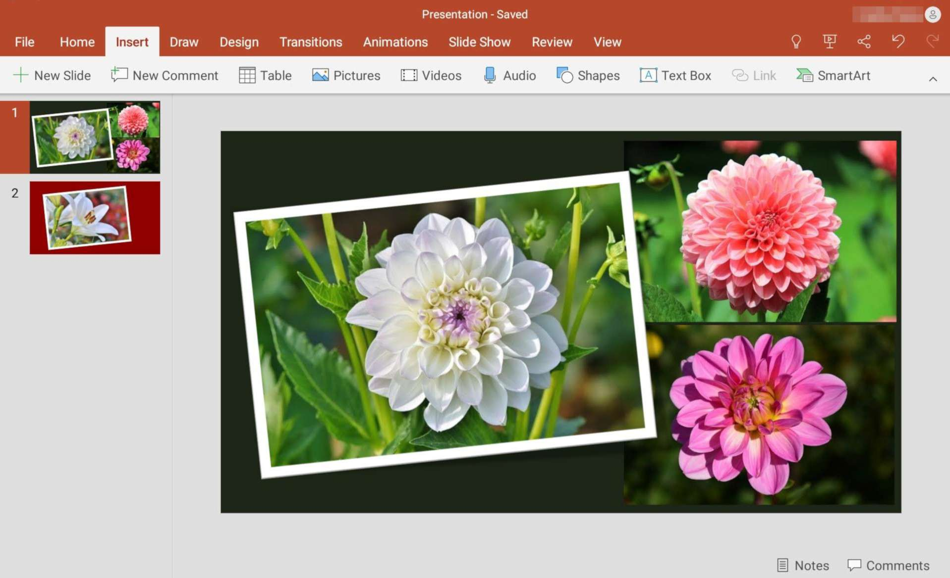 Create a photo slideshow in Microsoft PowerPoint