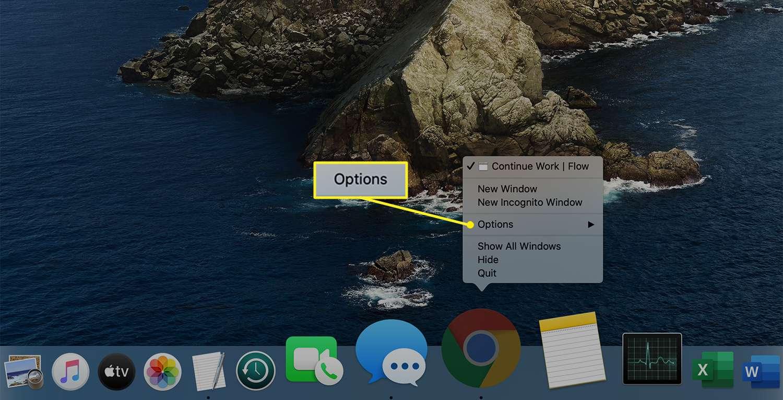 Options selected in the Mac Dock pop-up menu