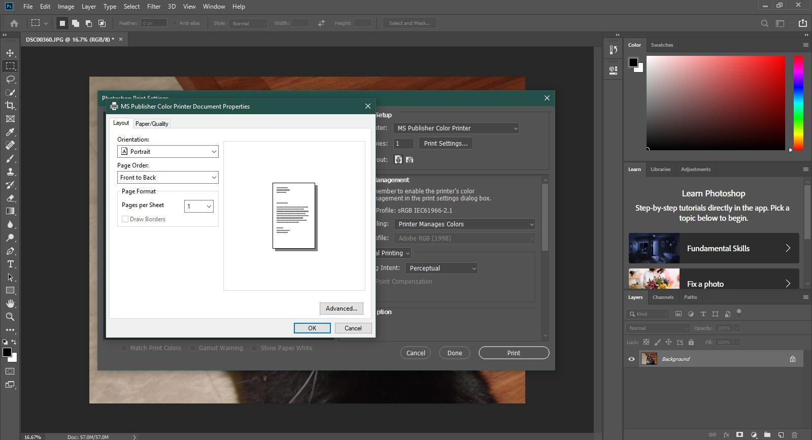 Understanding Print in Photoshop