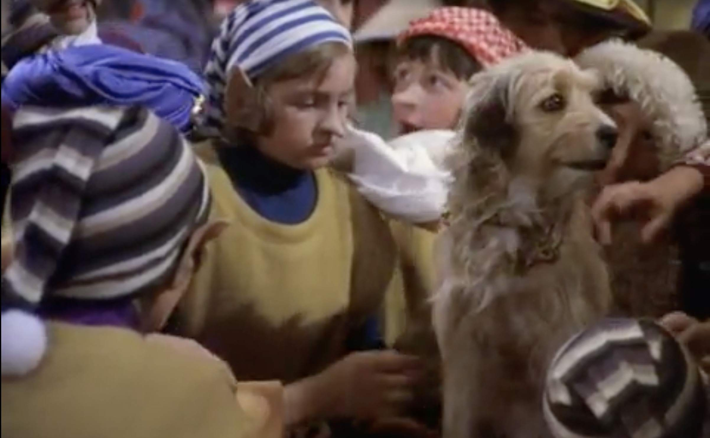 A still image of Benji's Very Own Christmas Story.