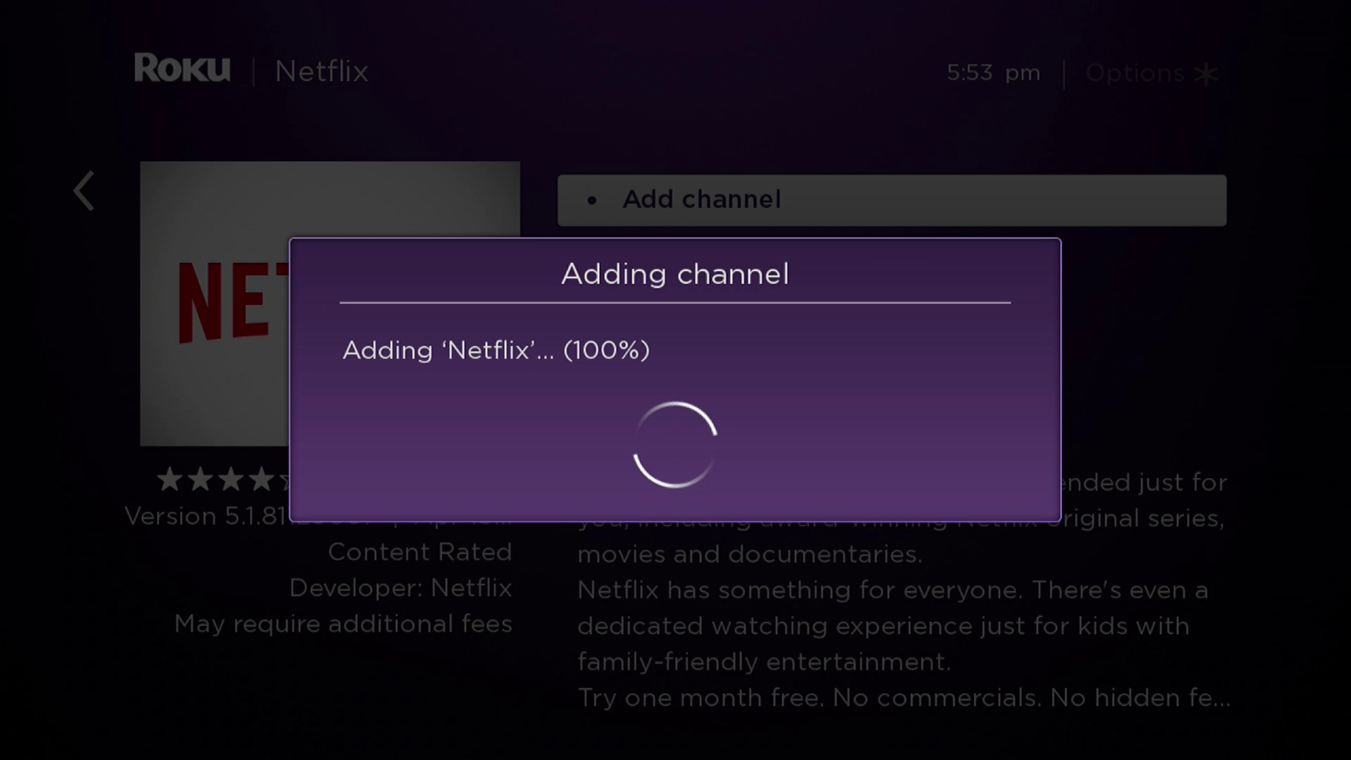 How To Get Netflix On Roku