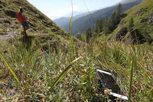 A hiker loses his phone