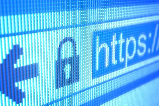 Screenshot of an internet browser's address window