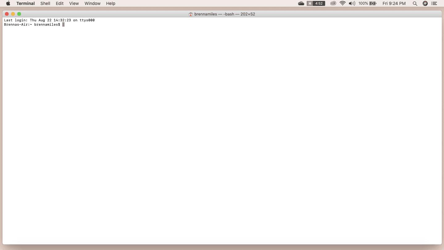 Terminal window on Mac