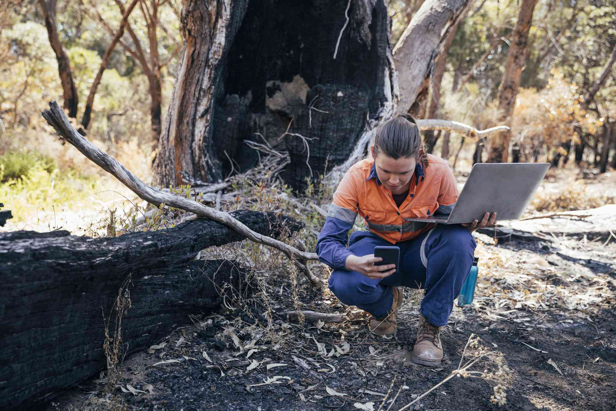 Someone collecting wildfire damage data with a computer and smartphone.