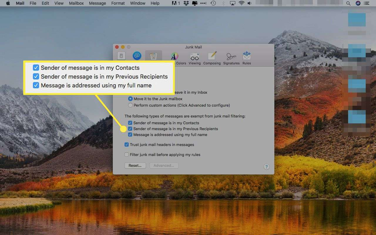 Apple Mail's Junk Mail preferences with the exception options highlighted