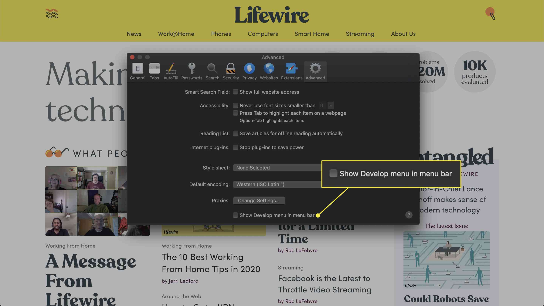 Screenshot of Safari's Preferences window with the