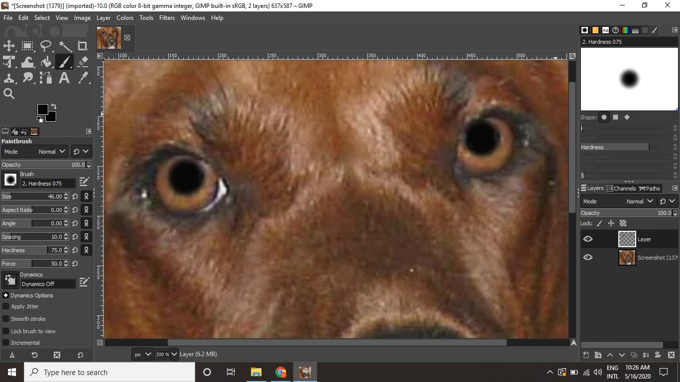 Zoom in and click on each eye to paint over the pet eye reflections.