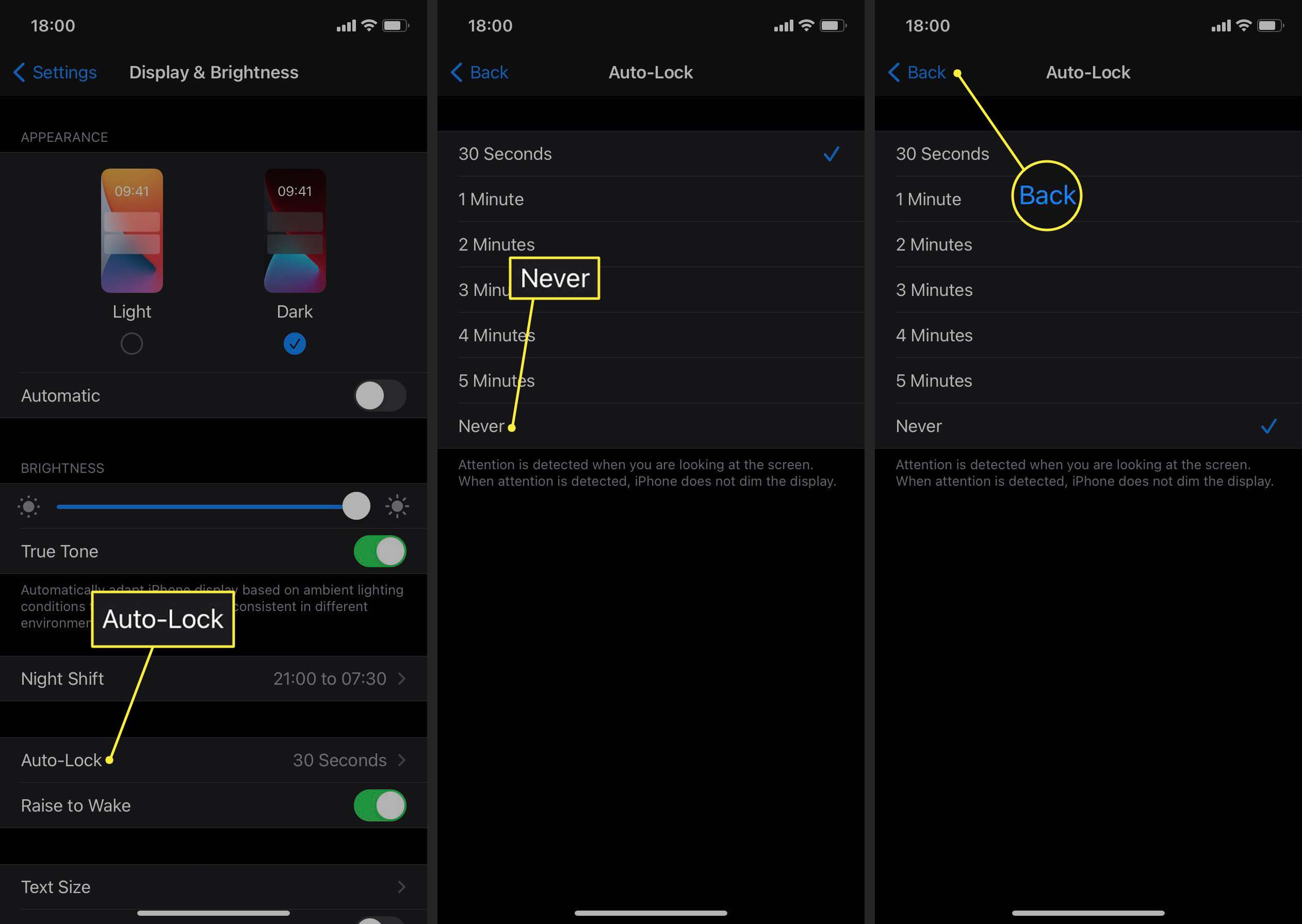 Auto-Lock, Never, and Back highlighted in iPhone settings