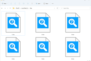 CHW files that open with FAR