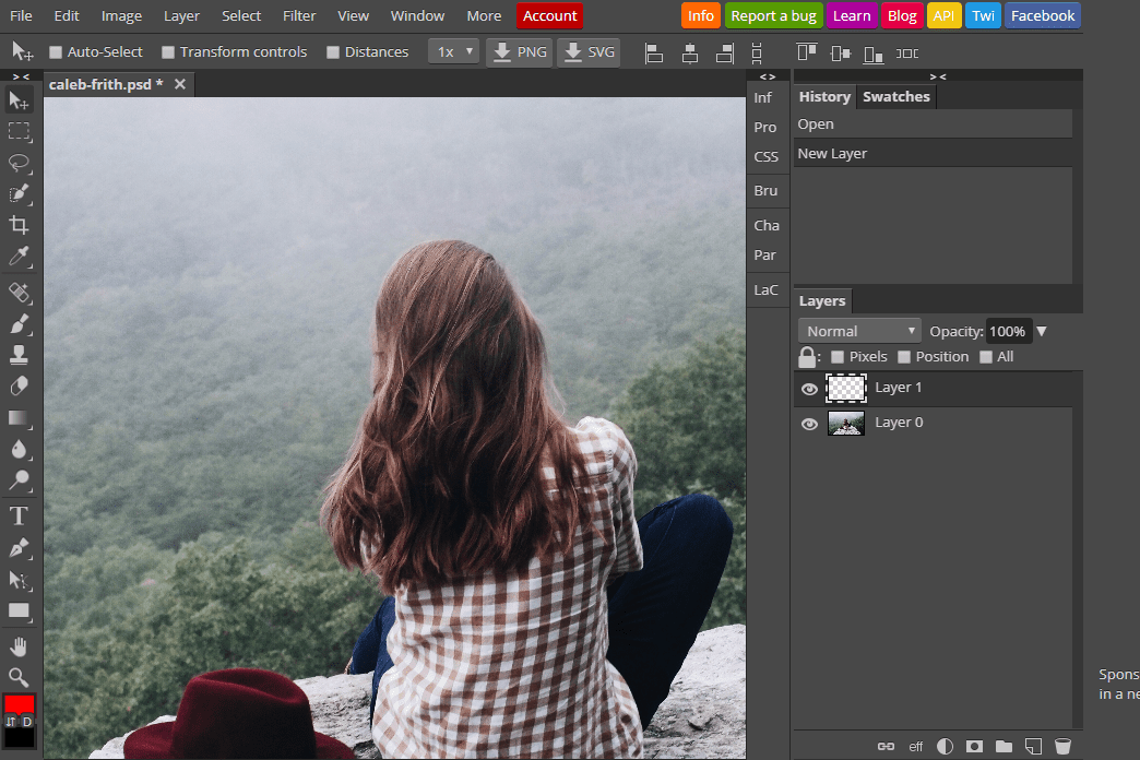 23 Free Online Photo Editors (Image Editing Websites)
