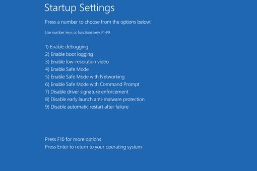 Screenshot of the Startup Settings menu in Windows 8