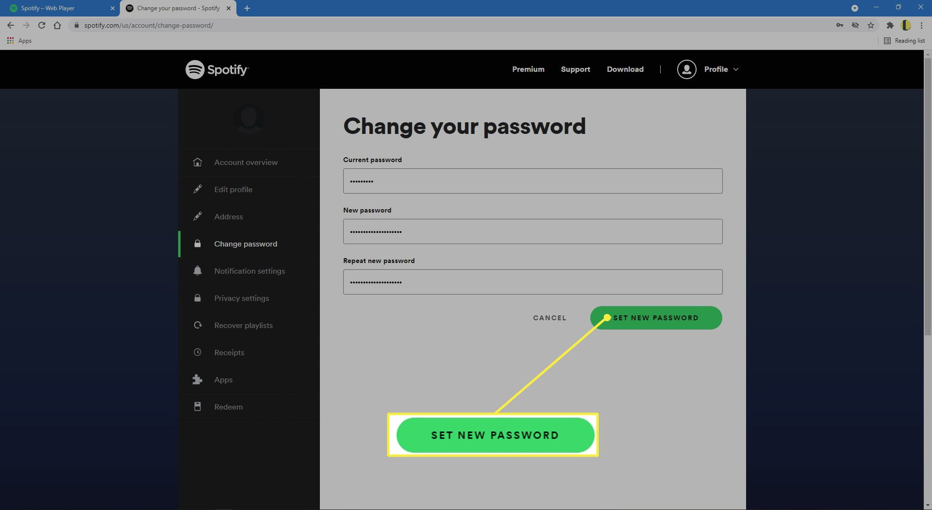Setting new password on the Spotify website.