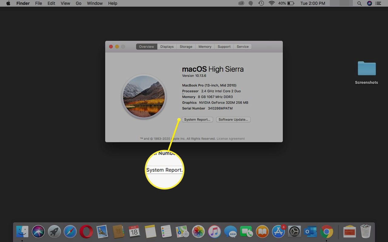 Selecting System Report on a Mac.
