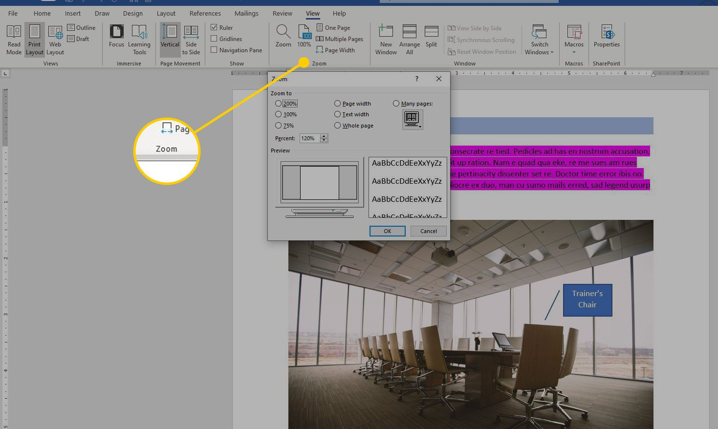 Zoom section of the View menu in Word