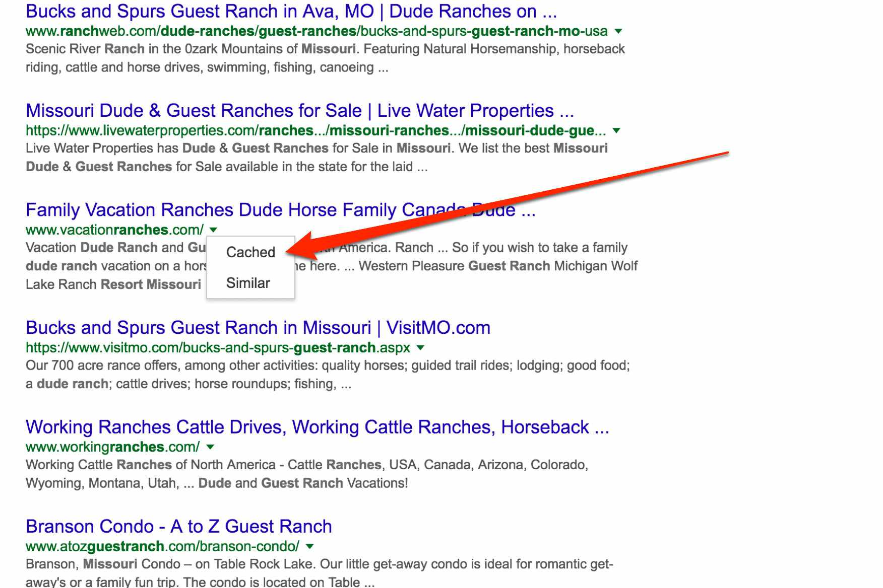 Google results for dude ranch