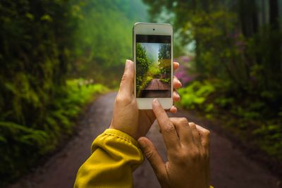 Closeup of someone taking a smartphone picture on a dirt road in the forest.