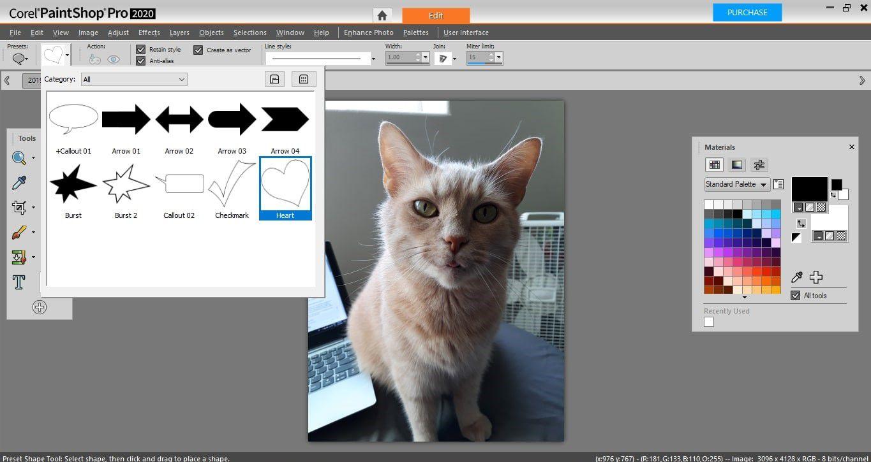 Shapes List presets in PaintShop Pro