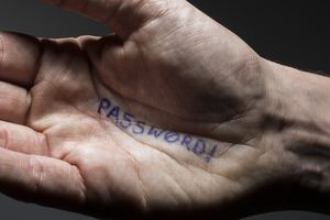 Password written in pen on a person's hand