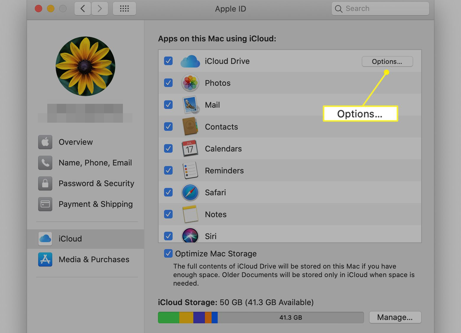 iCloud preferences with iCloud Drive Options highlighted