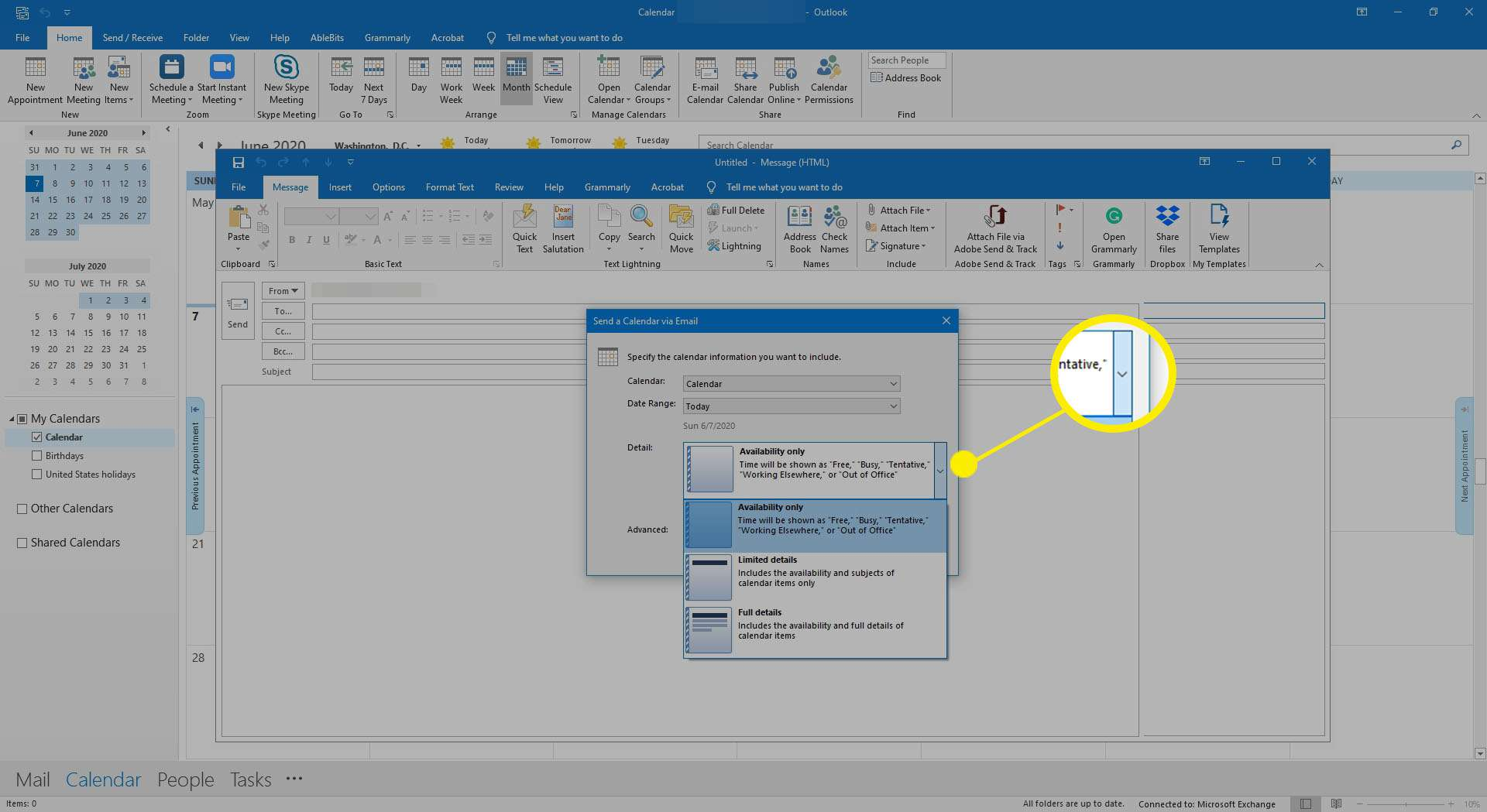 Selecting options for how much detail to share in an Outlook calendar.