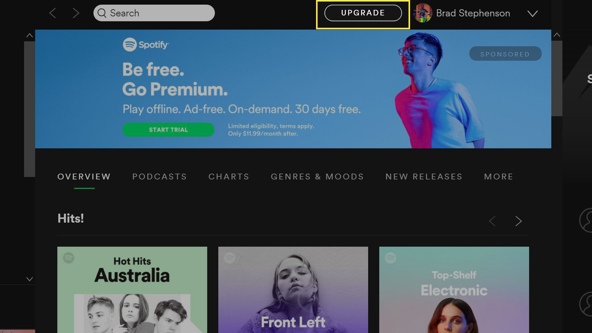 Spotify Premium upgrade button in the Windows 10 Spotify app
