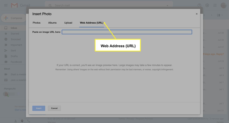 Gmaiil selection tab for Web Address (URL)