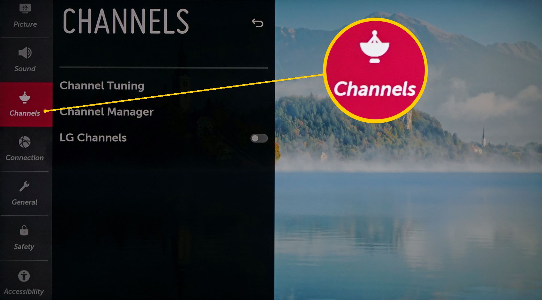 LG TV Settings – Channel Category Selected