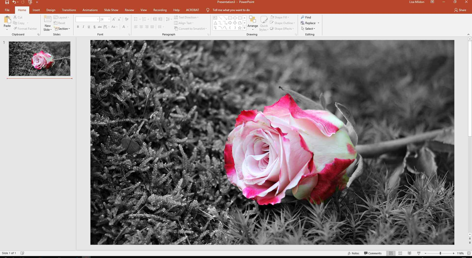 PowerPoint slide showing the head of a rose in color with the background in grayscale.